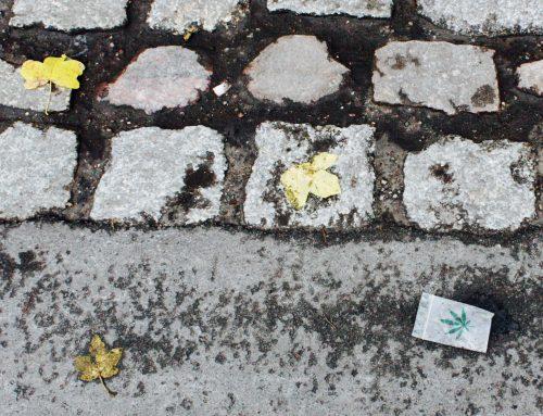 »Im Görlitzer Park gab es nie eine Null-Toleranz-Politik« – Heute helfen Integrationsprojekte