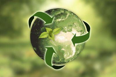 Eine Grafik, die eine grüne Erdkugel vor grünem Hintergrund zeigt. Um die Kugel gehen drei grüne Pfeile. Auf der Weltkugel sind grüne Blätter zu sehen.