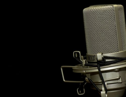 Aus dem Keller gegen die Diktatur der AfD (Audio)