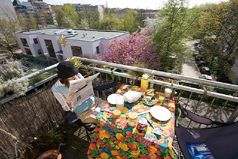 our balcony at breakfast time during full spring cherry blossom time