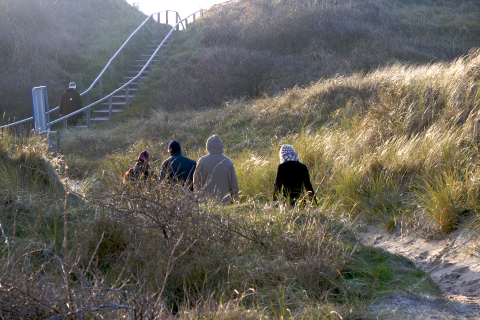 dunes on the island Juist