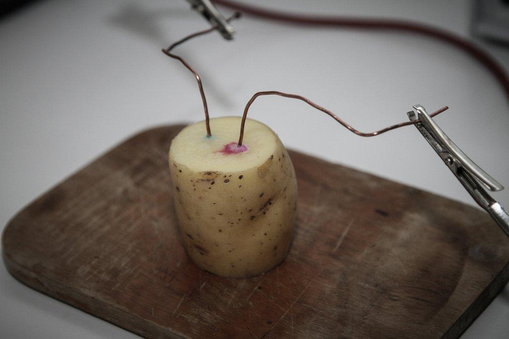 elektrochemie mit kartoffeln